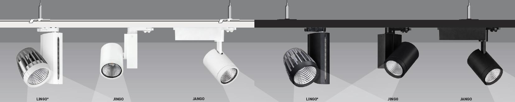 afb-header-gamma-illumination-track-spots